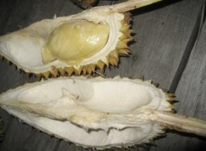 Bali-Bangkok Durian Flesh